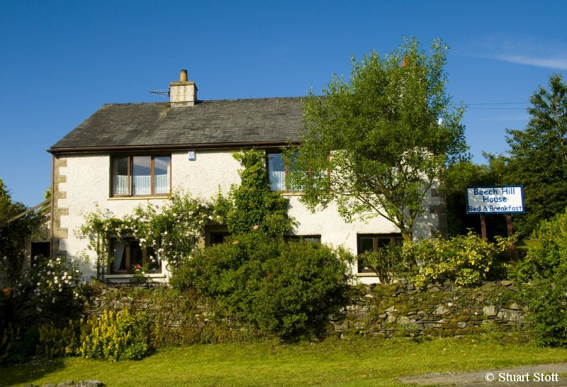 Dog Friendly Bed And Breakfast Near Windermere