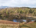 Tarn Hows in the spring